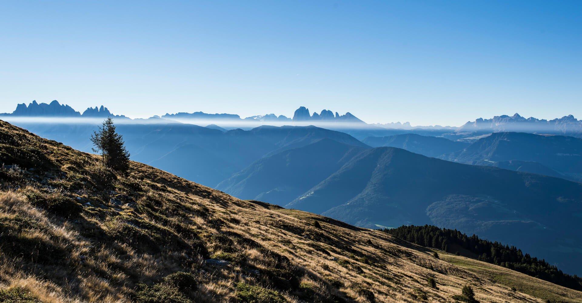 Südtirol Balance 1