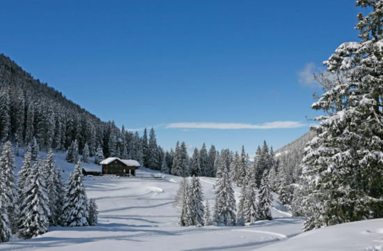 Winter holiday in Funes - Dolomites 7